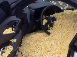NBA players prank teammate by loading his ₦50.7m Audi R8 with popcorn