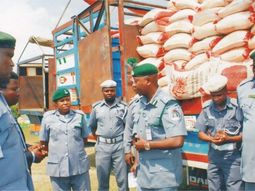 Nigeria Customs Service expose scammers: Check out full list