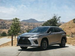 Take a look at the updated 2020 Lexus RX new luxury SUV