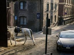 """Where the name """"horsepower"""" came from?"""