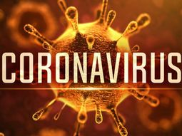 Nigerian government places travel ban on 13 countries amidst deadly coronavirus scare
