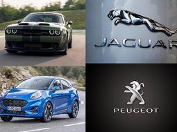 Check out these 10 cars that are named after cats