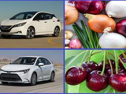 Top 10 cars named after plants: Lots of them are from Japan!