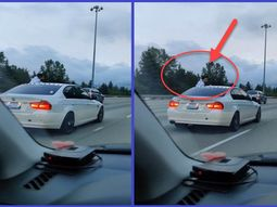 Fearless driver rides a BMW 3 series sedan on highway sitting on the window