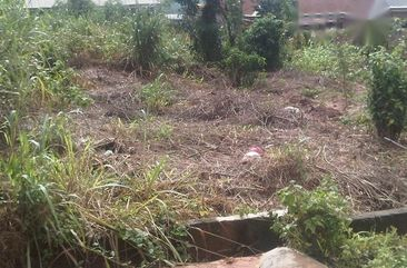 100ft By 100ft For Sale In Benin City