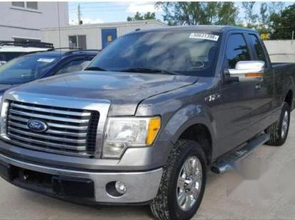 Ford F-150 2010 Gray for sale