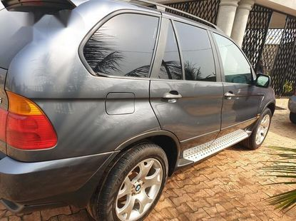 Bmw X5 2002 Gray for sale