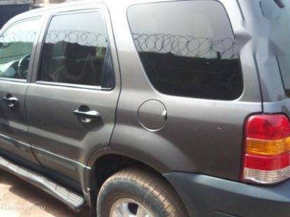 Ford Escape 2004 Gray for sale