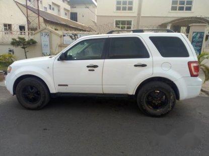Ford Escape 2008 White for sale
