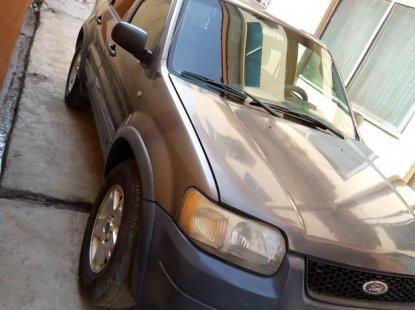 Ford Escape 2003 Gray for sale