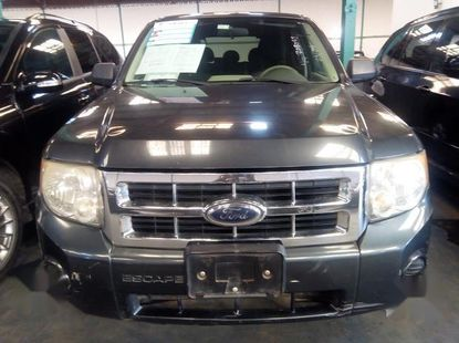 Clean Foreign Used Ford Escape 2008  Model Gray